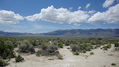 Unionville Nevada land for sale