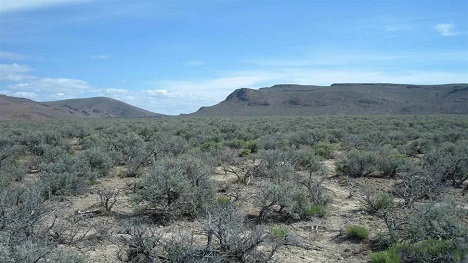 Nevada land for sale Paradise Valley 20 Acres